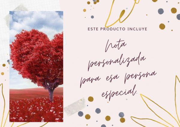 Nota personalizada Ana Castro